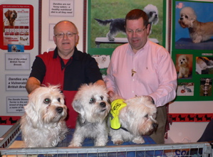 Discover Dogs at Crufts